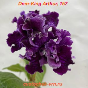 Dem-King Arthur, 157