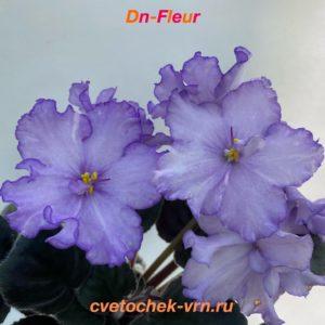Dn-Fleur (Д.Денисенко)