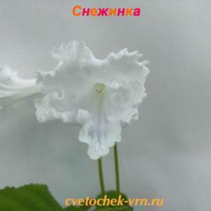 Снежинка (Н.Павлюк)