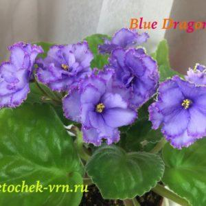 Blue Dragon (Sorano)