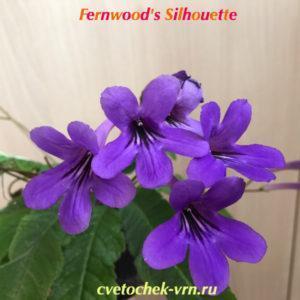 Fernwood's Silhouette (Lee Stradley)