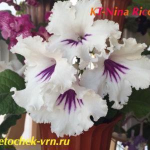 KT-Nina Ricci