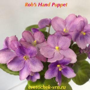 Rob's Hand Puppet (R.Robinson)